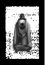 Профессиональный отпариватель SteamOne PRO2000